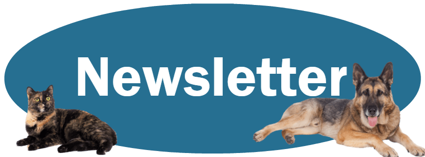 Newsletter Page banner