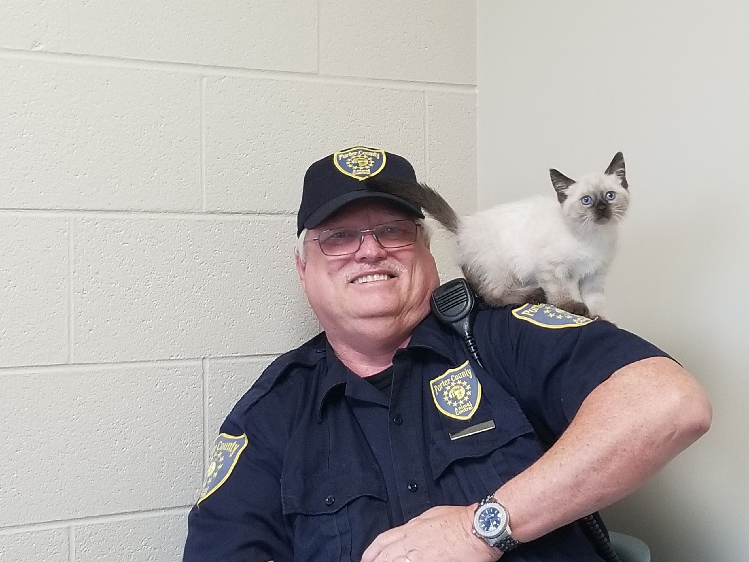 Photo of animal control officer with kitten on his shoulder