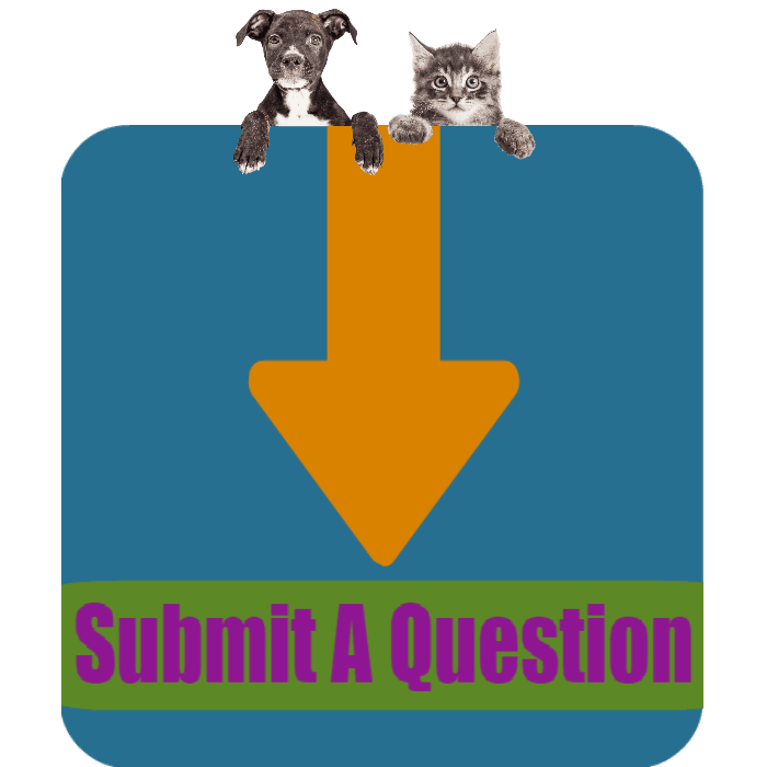 CLICK HERE to submit a general question to the Porter County Animal Shelter