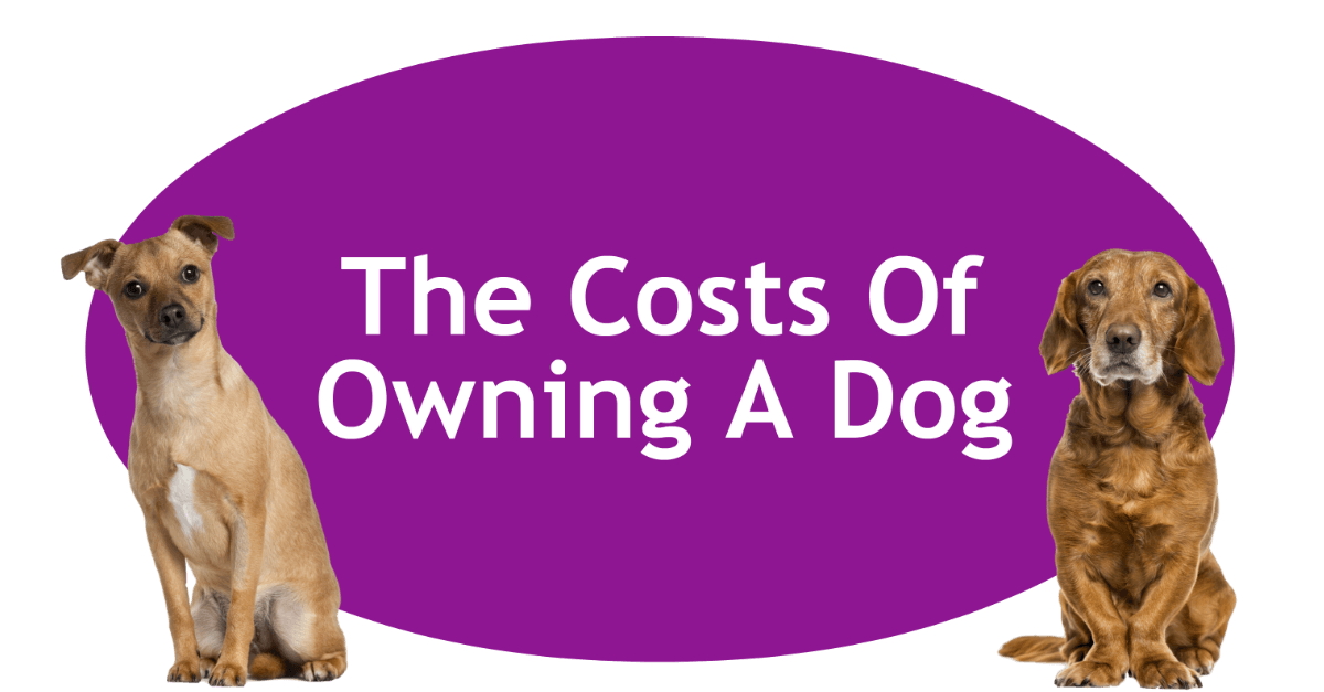 Costs Of Owning A Dog Page Banner