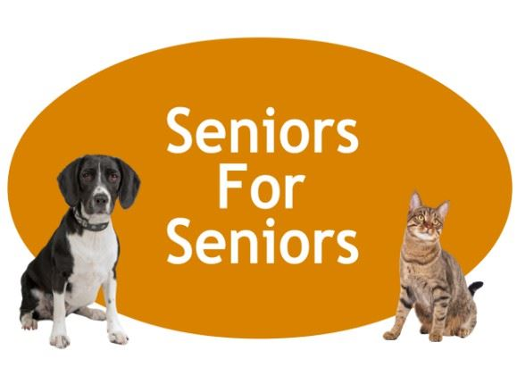 CLICK HERE for more information about our Seniors For Seniors Adoption Program