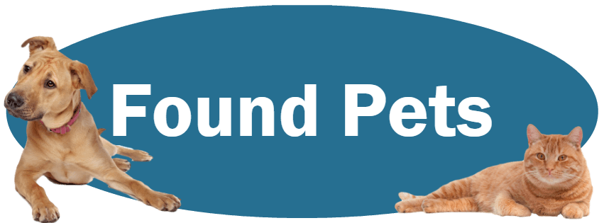 CLICK HERE To Learn About Our Policies For Found Pets