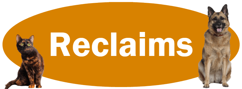 CLICK HERE To Learn About Our Reclaim Policies