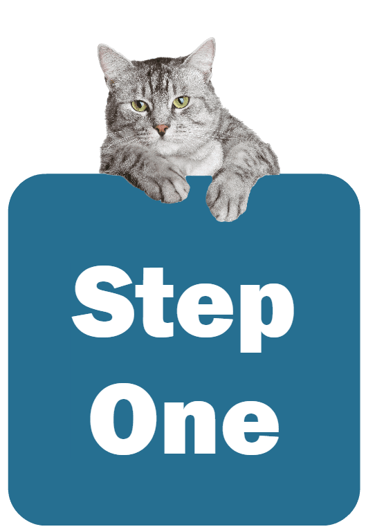Cat holding a sign that says Step One