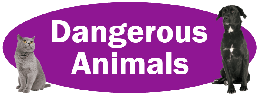 CLICK HERE For Information About Reporting Dangerous Animals