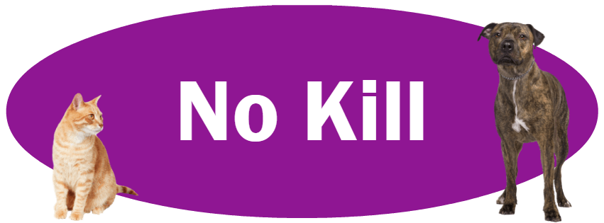 CLICK HERE for more information about our No Kill Policy & Reports