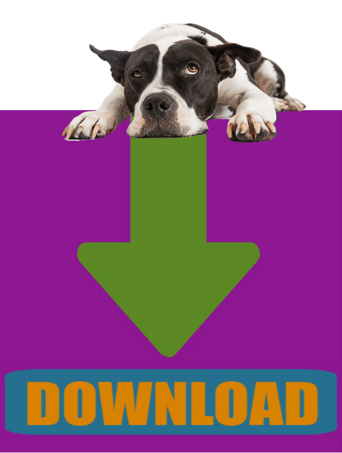 CLICK HERE to download the DOG Owner Surrender Intake Application.