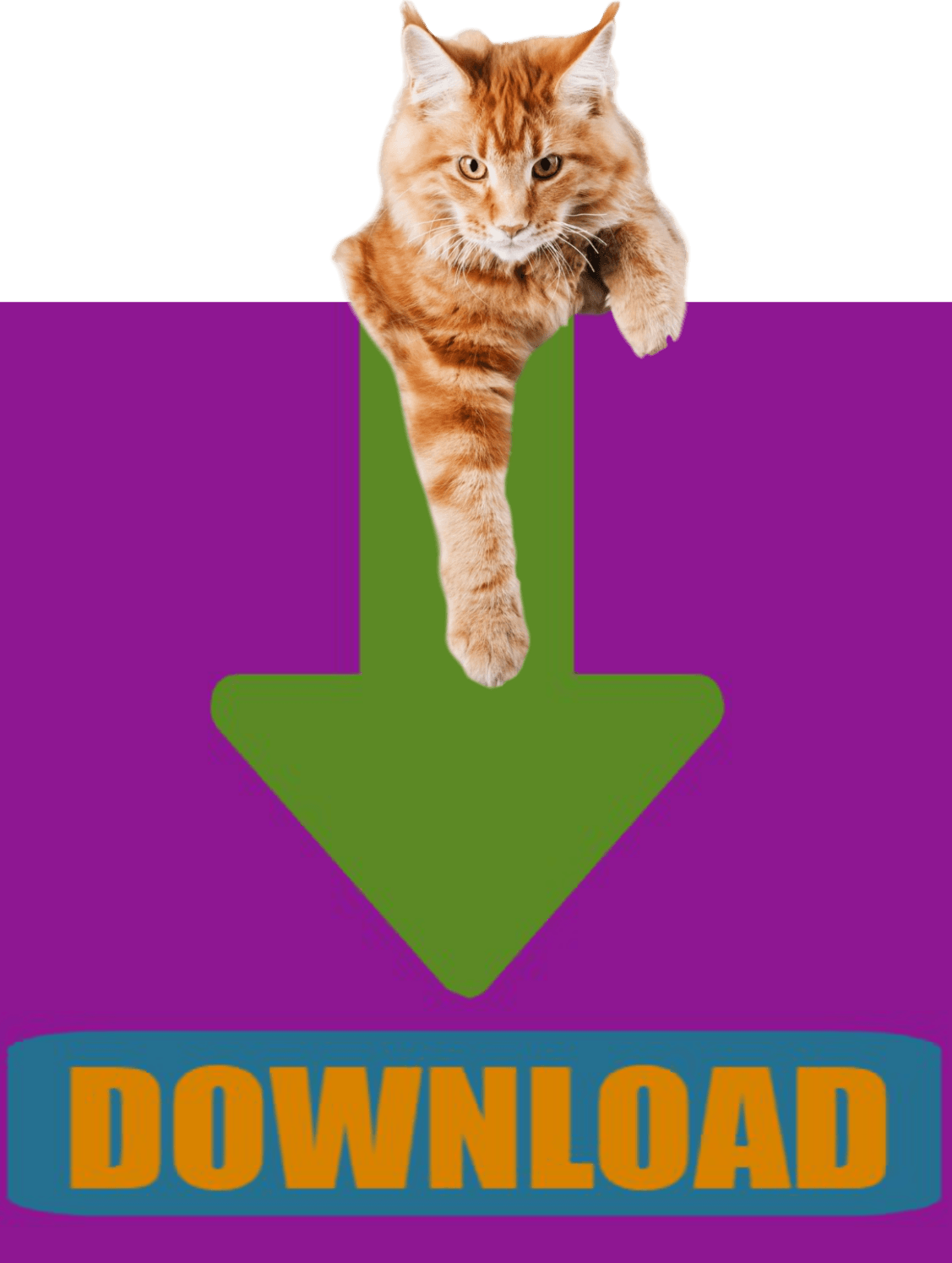 CLICK HERE to download the CAT Owner Surrender Intake Application.