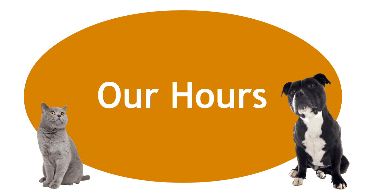 Our Hours Page Banner