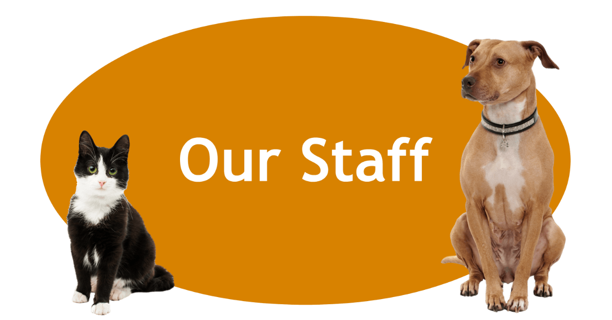 Our Staff Page Banner