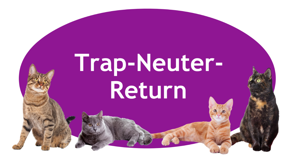 TNR Page Banner