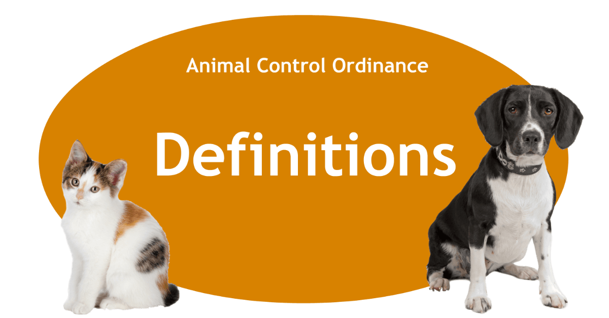 Definitions Page Banner