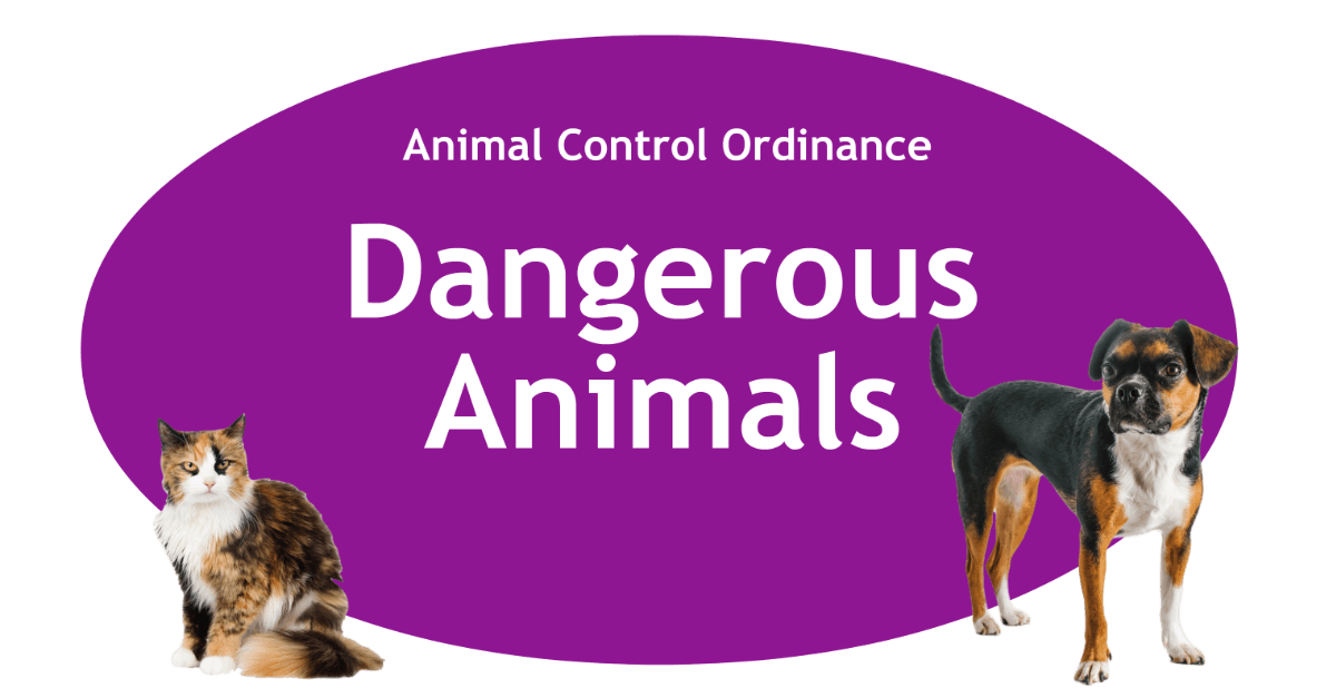 Dangerous Animals Page Banner