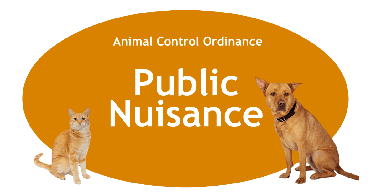 Public Nuisance Page Banner