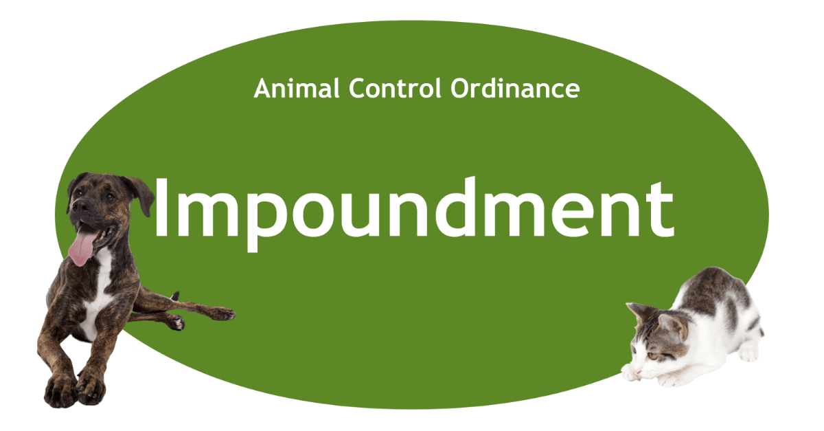 Impoundment Page Banner