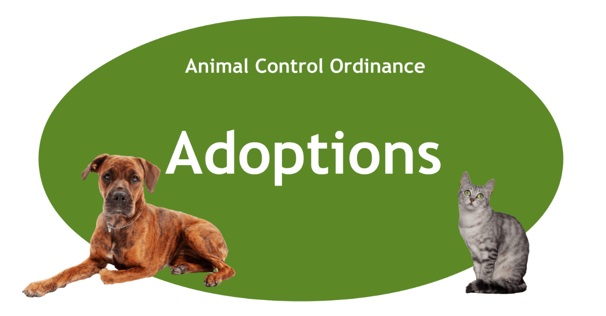 Adoptions Page Banner