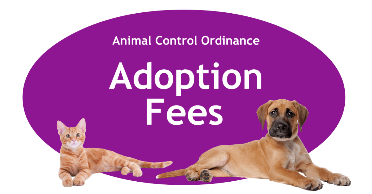 Adoption Fees Page Banner