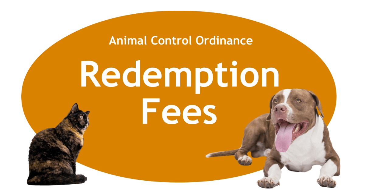 Redemption Fees Page Banner