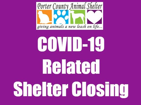 COVID 19 Related Shelter Closing